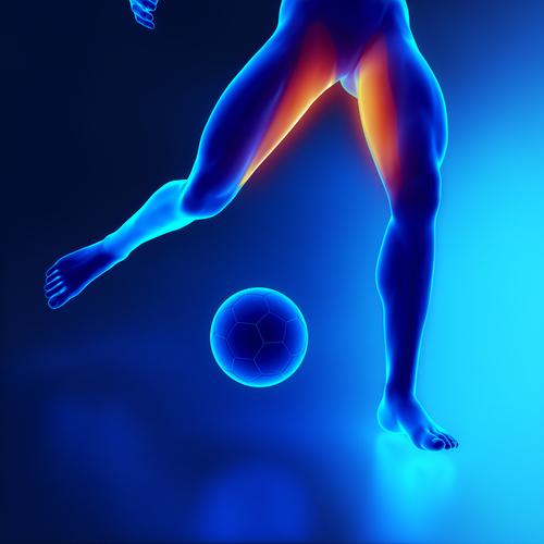 hernia through sports
